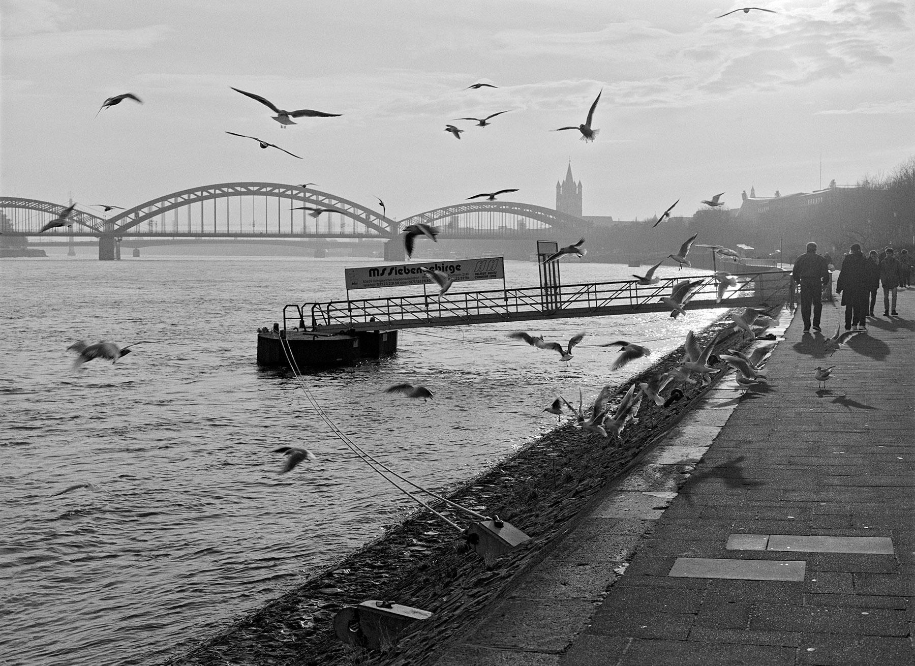 05_Rhein001